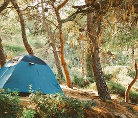 4 Ways to Channel your Inner Woodsman and Camp Like a Pro - Adriana's Insurance