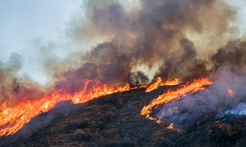 4 Life-Saving Safety Measures that Protect Against Wildfires
